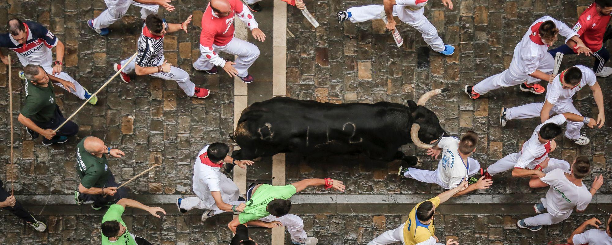 Oameni si tauri la Pamplona
